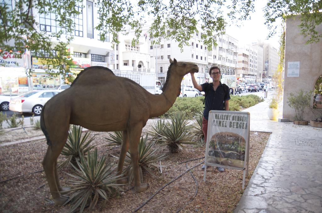 Camel burger restaurant