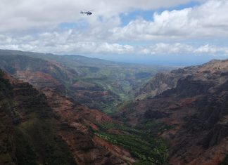Helicopter door Waimea Canyon Hawaii