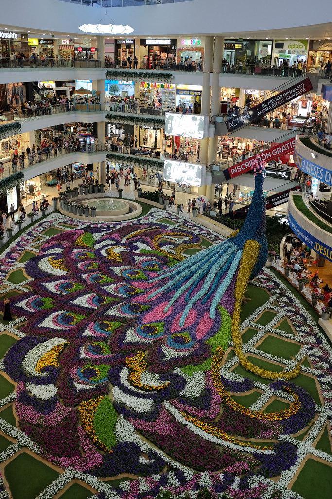 Gigantische pauw van bloemen in winkelcentrum Medellin