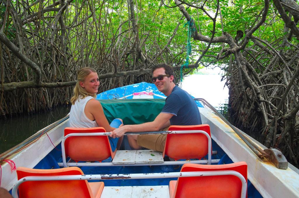 In de mangrove