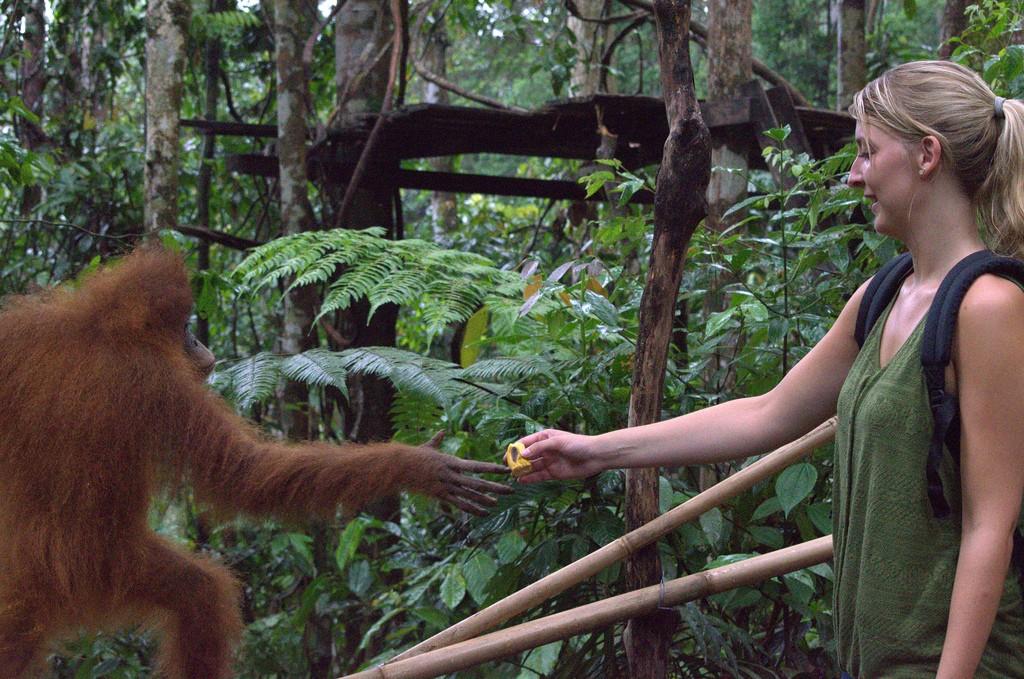 Suus voert baby Orang Oetan