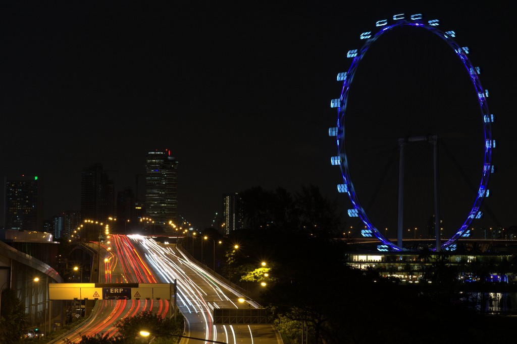 The Singapore flyer by night
