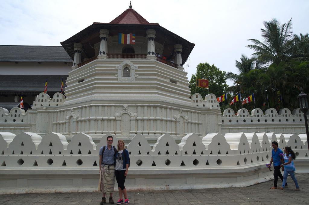 Voor de Tooth Temple
