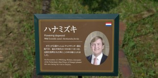 King of The Netherlands Willem-Alexander planted a tree