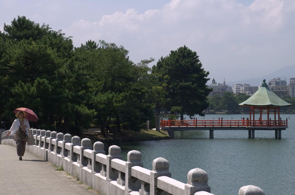 Bridge Ohori Park Fukuoka