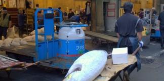 Tsukiji vismarkt tonijn