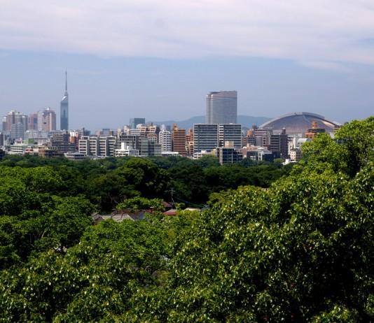 View Fukuoka Tower from Ohori Park
