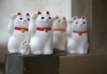 Japanse gelukskatten