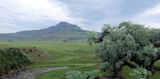 River Walk Drakensberg eindpunt