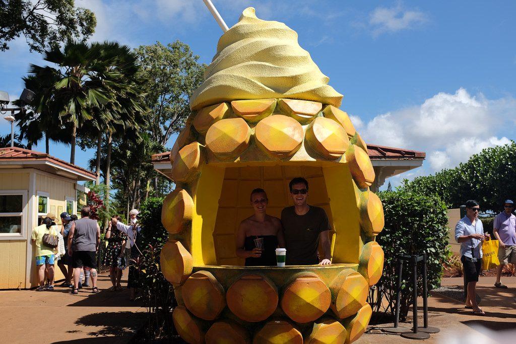 Reizen over de wereld ananasplantage Hawaii