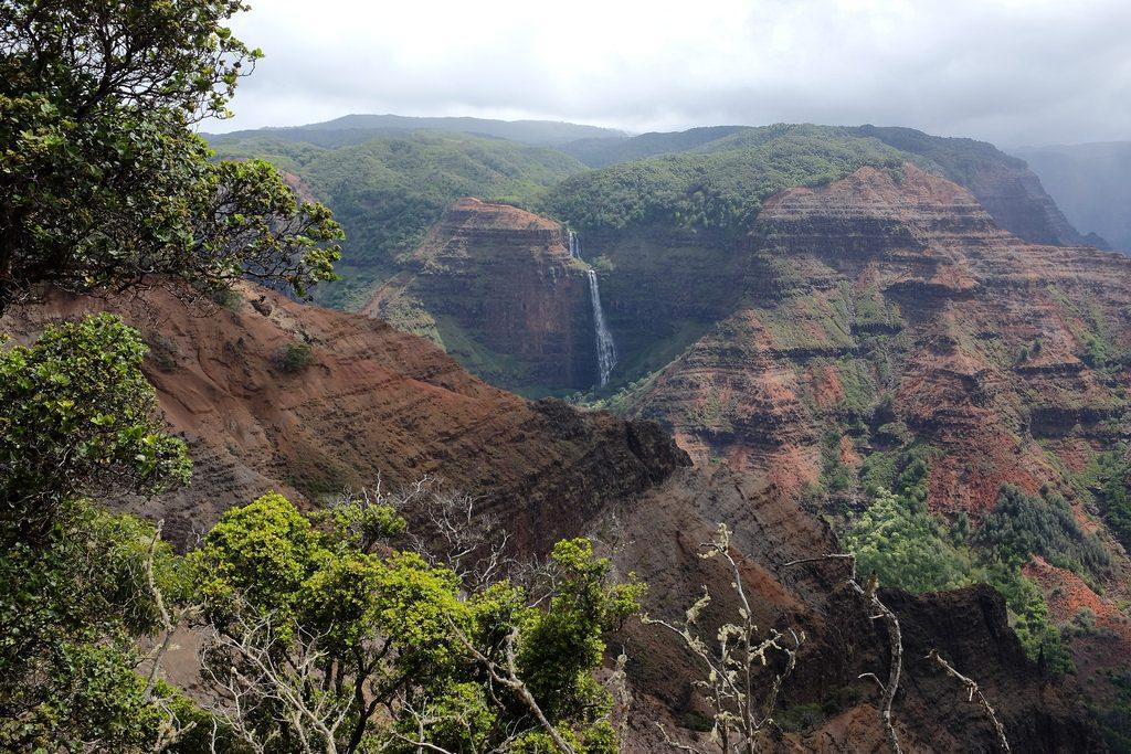 Uitzichtpunt Waimea Canyon Hawaii auto