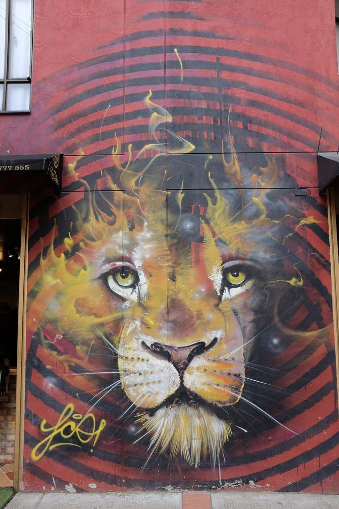 Bogota graffiti leeuw