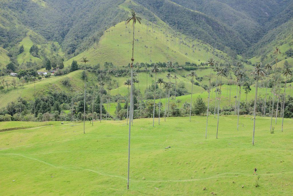 Top 10 bezienswaardigheden Colombia