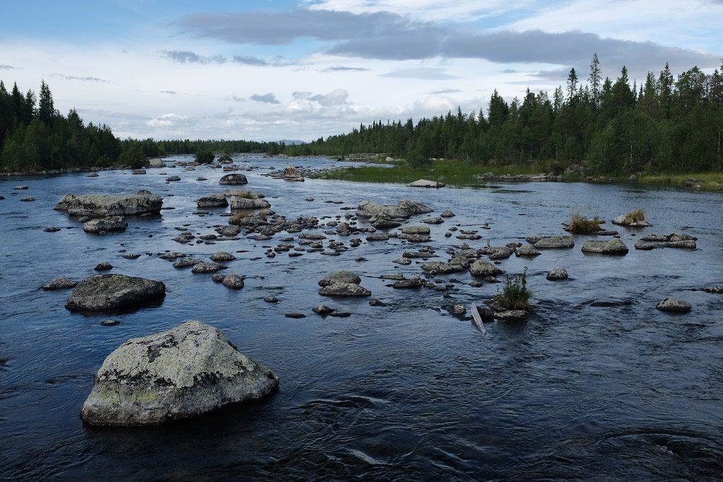 Arjeplog natuur Zweeds Lapland zomer