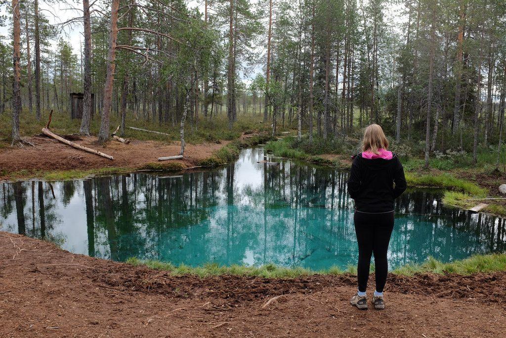 Grodkällan Cold Spring Zweeds Lapland zomer