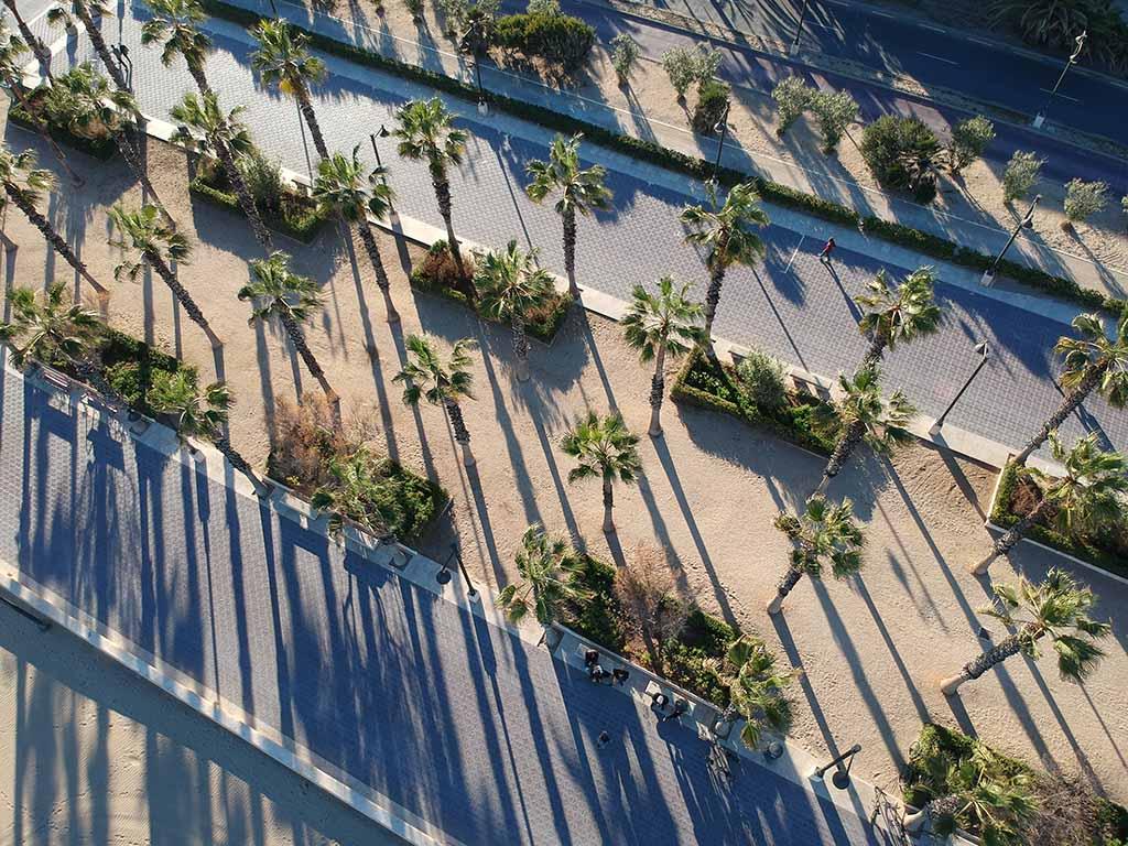 Mannenweekend Europa palmbomen droneshot DJI Spark
