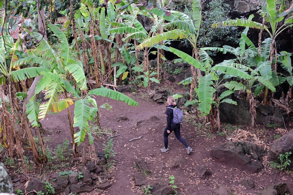 Paaseiland bezoeken: Bananengrot Ana Te Pahu