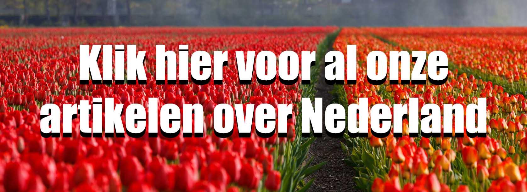 Alle artikelen over reizen in Nederland