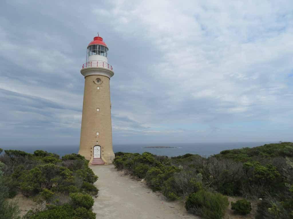 Cape Du Couedic Vuurtoren Kangaroo Island Australie