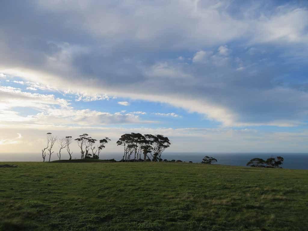 Kangaroo Island Australie (2)