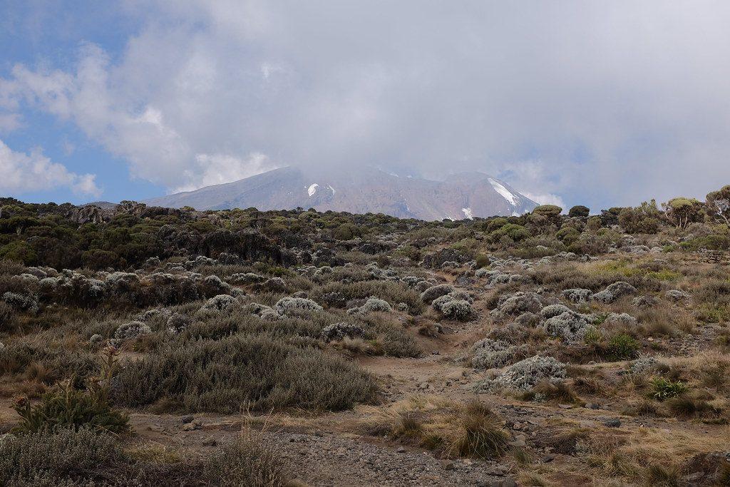 De Kilimanjaro bewolkt