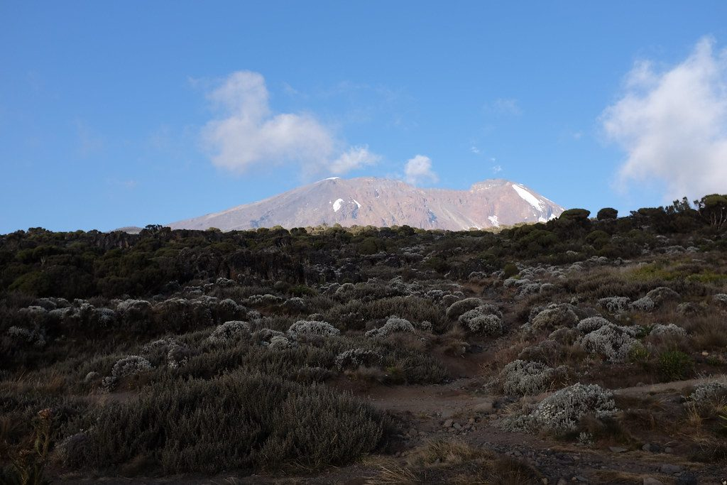 De Kilimanjaro bij zonsondergang