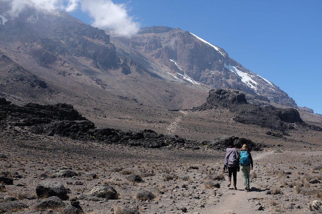 Op weg naar Lava Tower Kilimanjaro beklimming