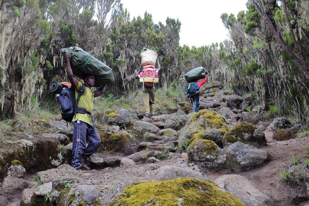 Porters lopen omhoog beklimming Kilimanjaro