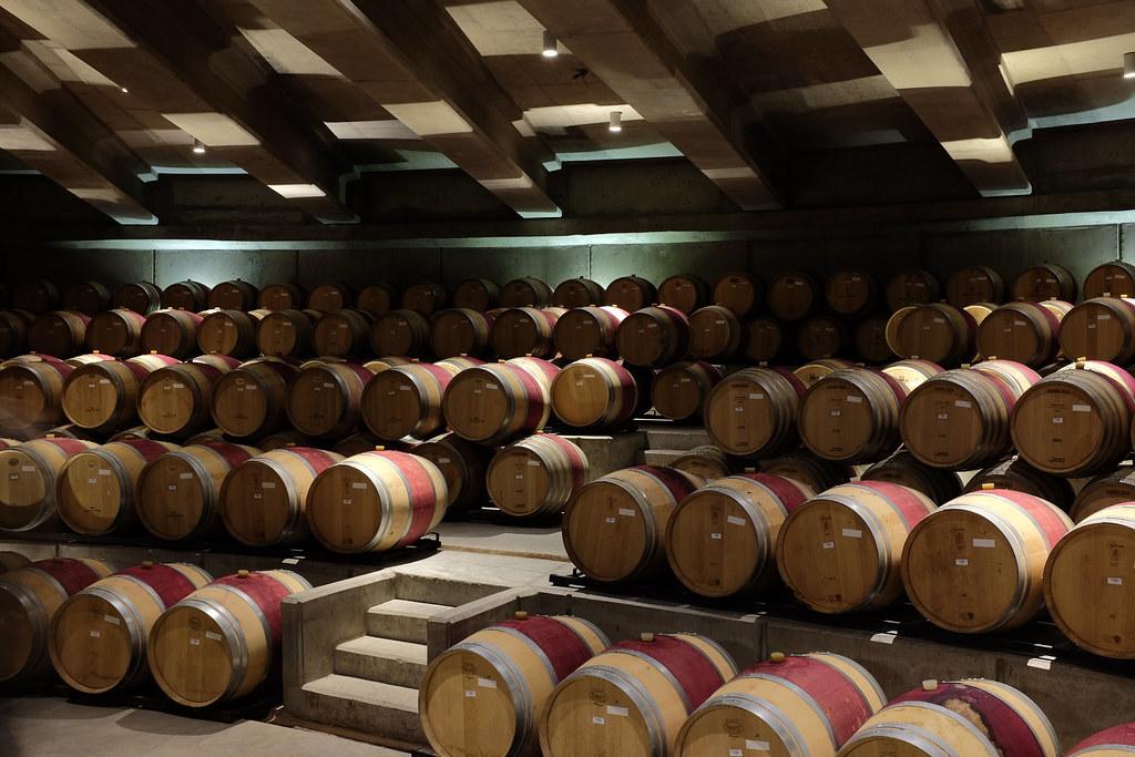 Houten vaten voor wijn bij Montes