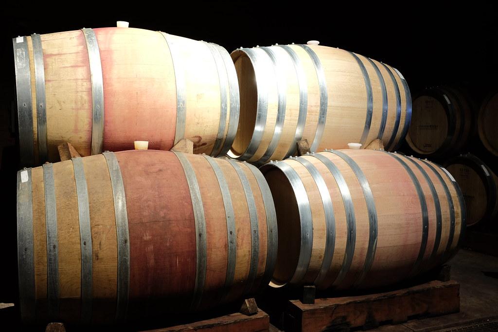 Wijnvaten in de Casablanca Valley